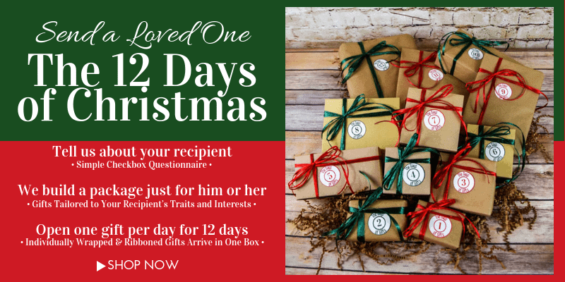 the 12 days of christmas gifts open one gift a day for 12 days